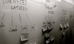 Stockholm workshop white board—thinking about the outline of the book.