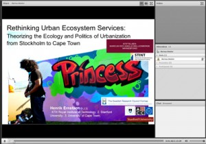Webinar H Ernstson on Critcal engagement with Ecosystem Services at PSU April 2014