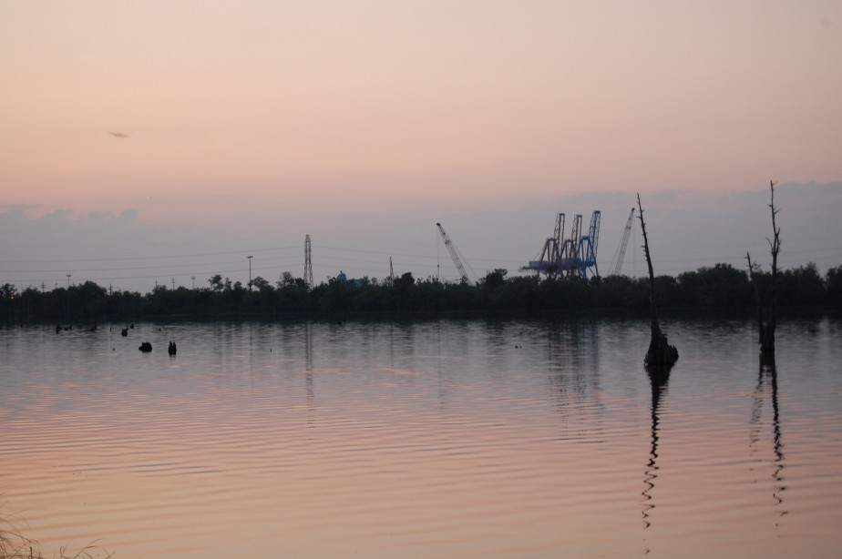Degraded Swamp and Port